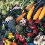 Mix of vegetables | Wealthify