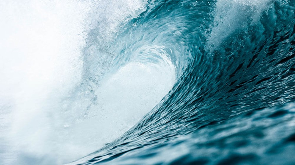 Riding the wave: Market ups, downs and bounce backs